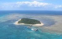 ケアンズのオプショナルツアーのグリーン島